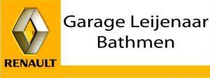 Logo-Leijenaar